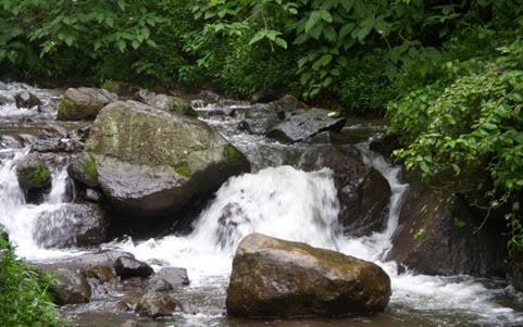 Choice Your Holiday Cool Waterfall Coban Rondo