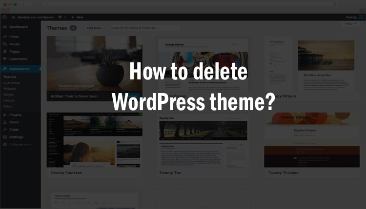 WordPress theme kaise uninstall kare