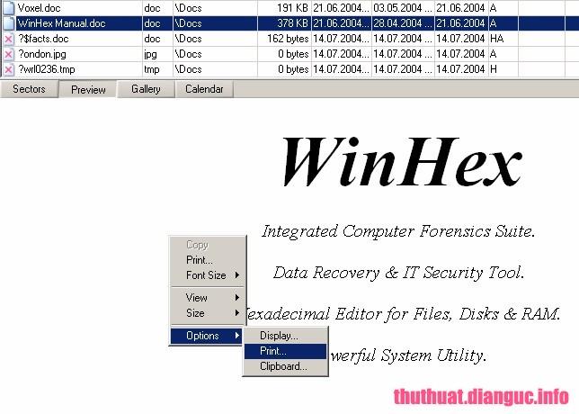 Download X-Ways WinHex 19.8 Full Crack, trình biên tập đĩa chuyên nghiệp , trình biên tập thập lục phân Mã Hex, X-Ways WinHex free download, X-Ways WinHex, X-Ways WinHex full key