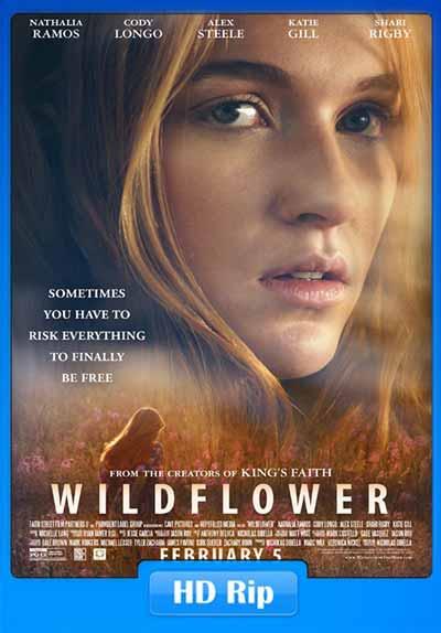Wildflower 2016 300MB Movie 480p WEBRip ESubs x264
