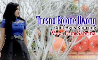 Errina Sabrina Tresno Bojone Uwong