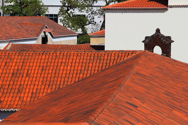 roofs with different shades and architectures