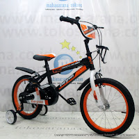 16 Inch Evergreen EG1240 Kids Bike