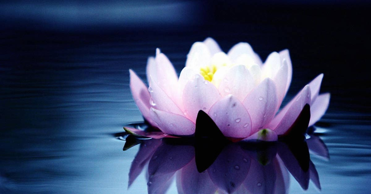 4 enseñanzas del Tao para manejar a  las personas difíciles