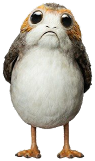 Star Wars Porgs Coloring Page - Thanksgiving - The Star ...