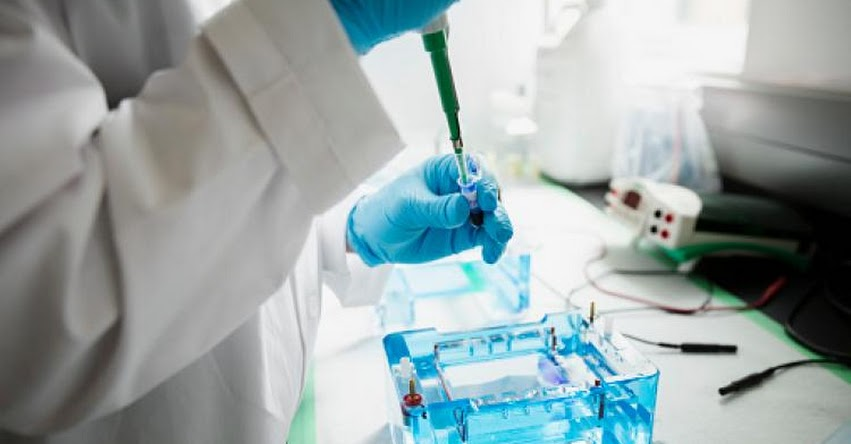 ADN: Negativa de someterse a prueba será considerada como aceptación de paternidad