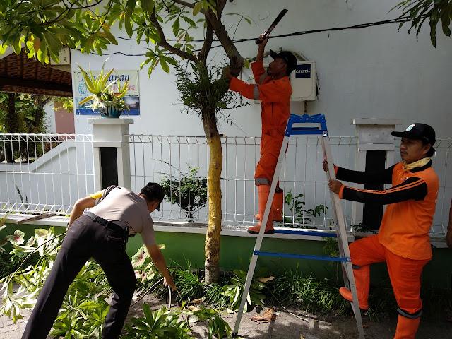 Image result for bhabinkamtibmas Pohon tumbang pulau tidung