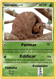 Cartas de Pokemon con Fauna uruguaya (Pradera) - Hornero