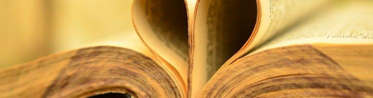 GRATUITEMENT TÉLÉCHARGER BIBLE SEMEUR.JAR