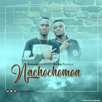 Download Audio | Salum Simba ft Beka Flavour - Nachechemea