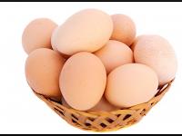 Agar Bayi Cerdas, Ibu Hamil Harus Konsumsi Telur