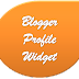 Set Profile Widget for Blogger Below the Post