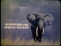 Aventuras con la fauna africana