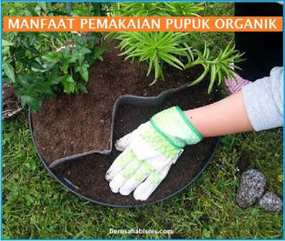 Apa Keuntungan Penggunaan Pupuk Organik Pada Pertanian dan Perkebunan