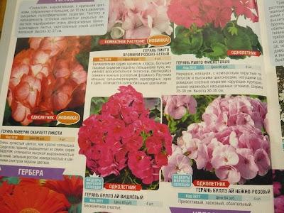 каталог сады россии