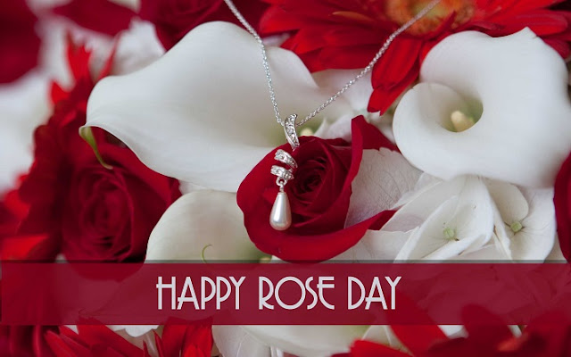 Rose Day Wishes Quotes, rose day wishes images