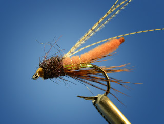 fox poopah caddis pupa fly pattern