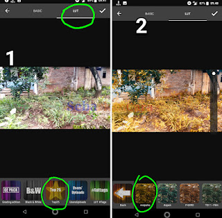 Tutorial Color Grading Video di Android (Merubah warna Tumbuhan)