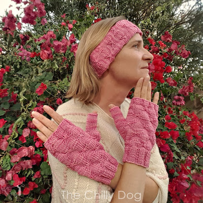 Now available from The Chilly Dog, the Butterfly Kisses knit earwarmer and fingerless mitts pattern featuring Skacel HiKoo Sueño Tonal yarn.