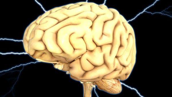 ¿El cerebro puede reprogramarse para combatir la demencia?