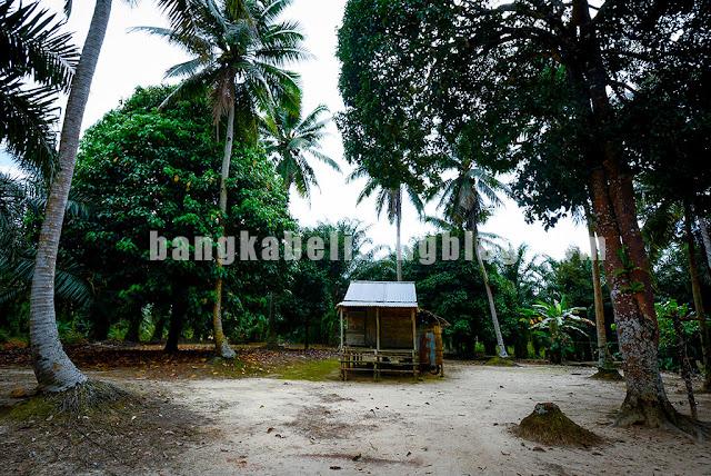 rumah-adat-bangka-belitung