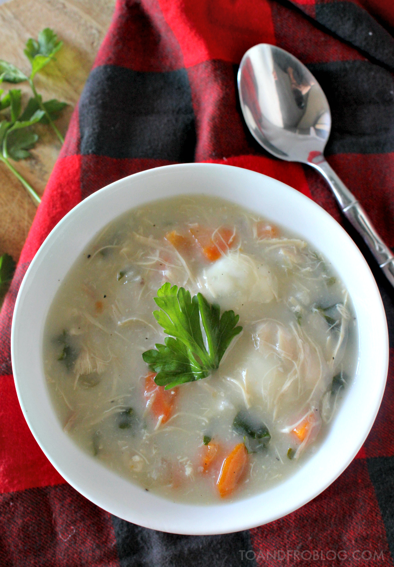 The Best Chicken Dumpling Soup Recipe