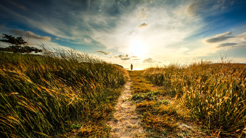 Walk to Sunset