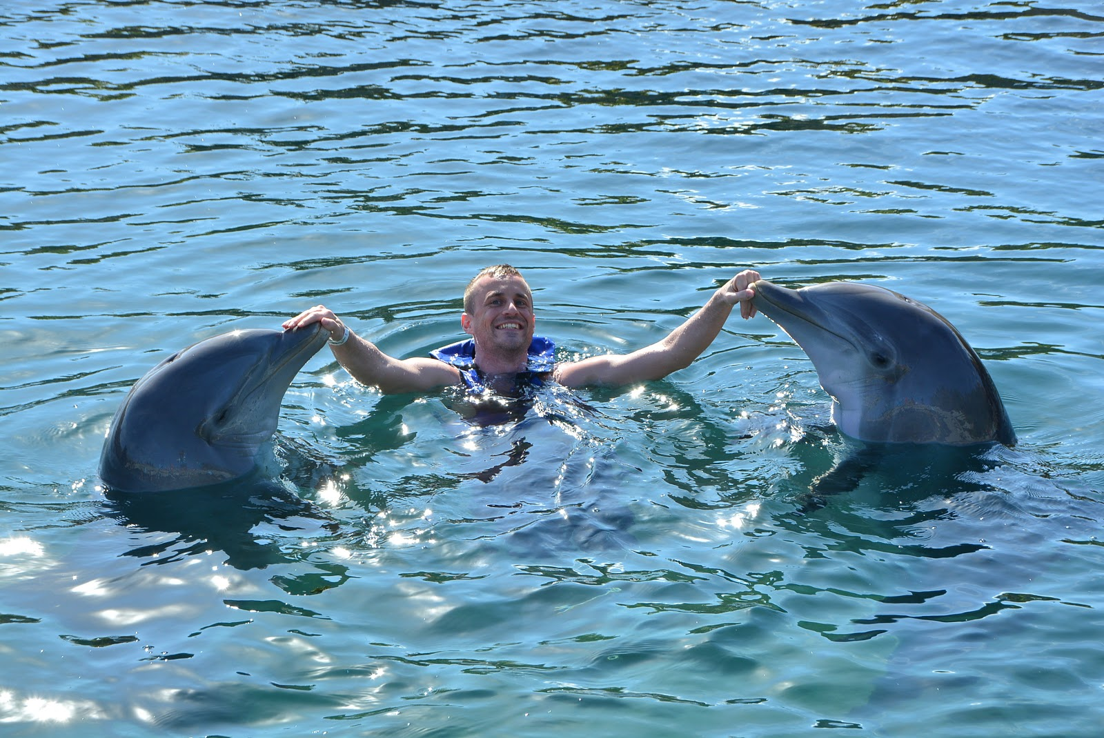 swimming with dolphins, dolphin experience, mexico, mexico vacation, delphinus riviera mava, xcaret, dolphin kisses, dolphin swim, ocean, ocean swimming,