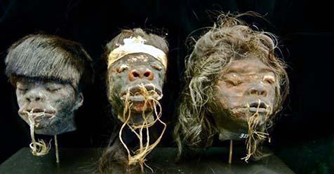 Shrunken Head Mystery
