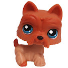 Littlest Pet Shop Multi Packs Scottie (#249) Pet