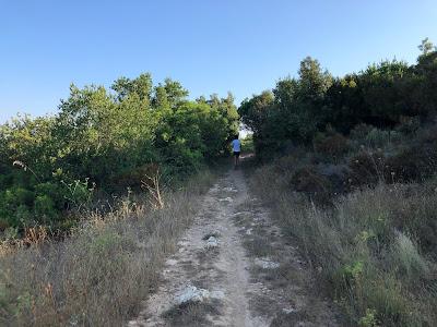 The trail on the ridge of the hill above Nisporto/Nisportino Elba.
