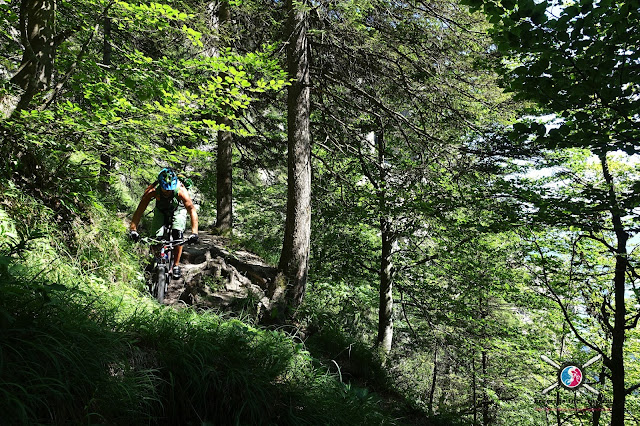 Stahlbike auf dem Trail
