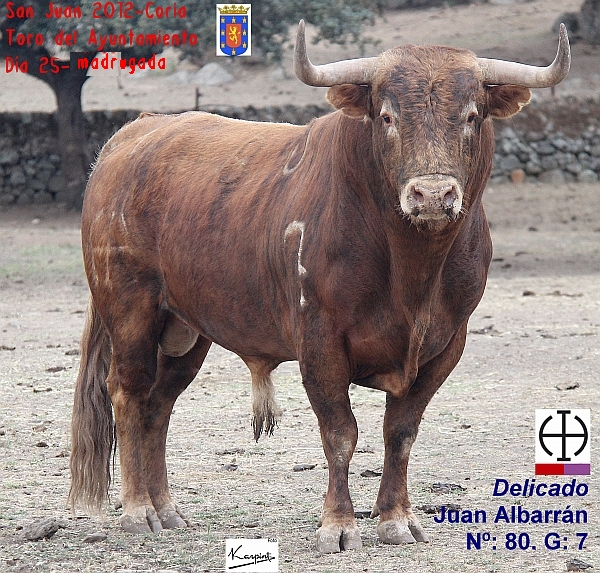 Se hacercan fechas señaladas para Coria...-http://4.bp.blogspot.com/-txFZ4sP10Nk/T8AzYCz5IWI/AAAAAAAAEak/1on6XUL3zvY/s1600/SJ12_03_25n_Ay_Delicado-N80-G7_JuanAlbarran-txt_600x573.jpg