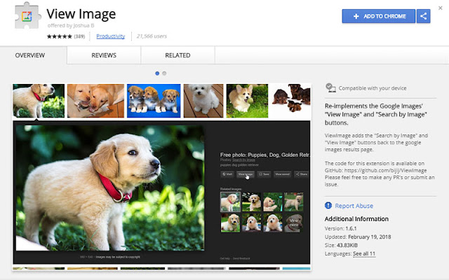 How to Get Back Google's Missing 'View Image' Button & Solution