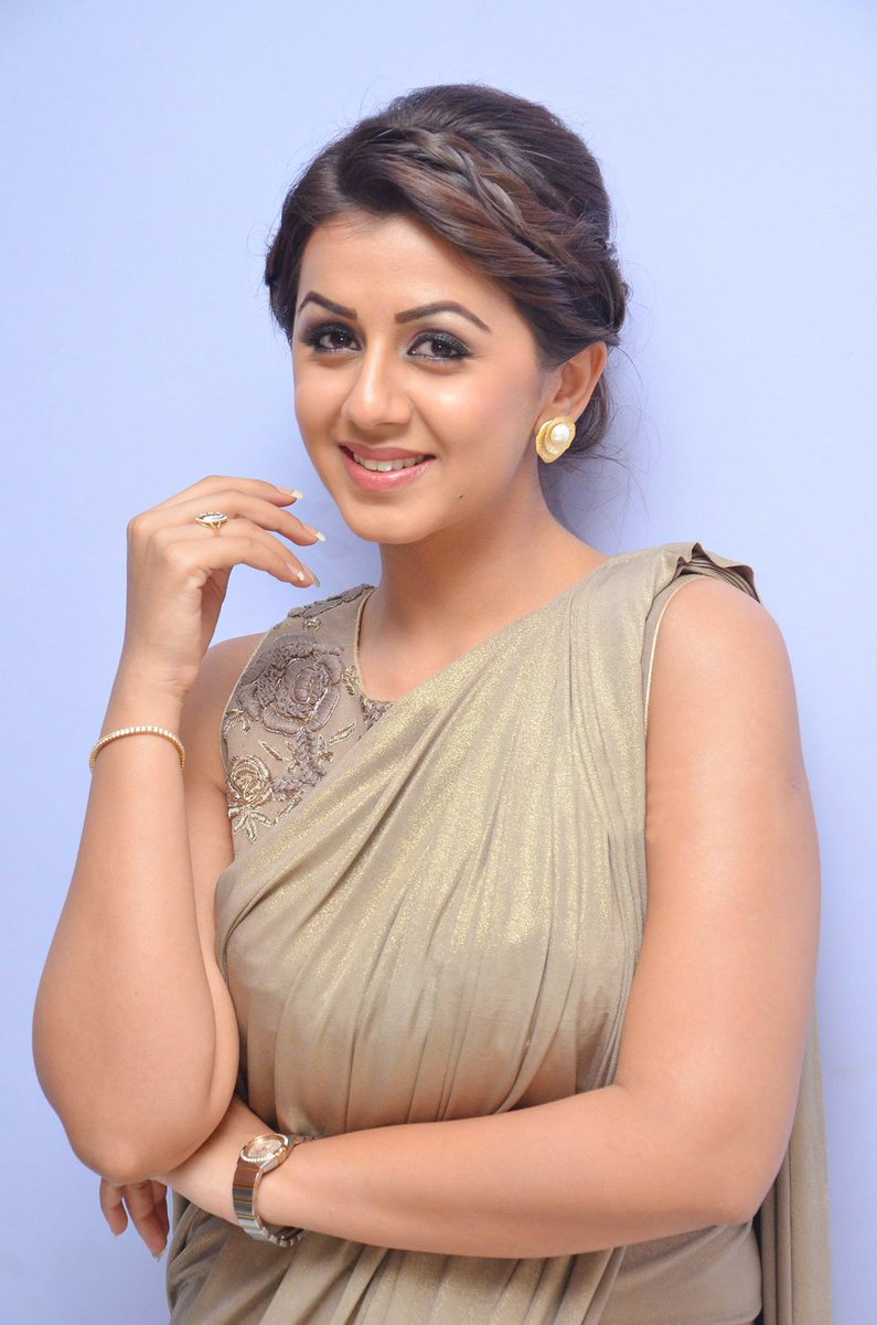 Gorgeous Actress Nikki Galrani Hot Photos