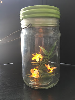 memories, fireflies, ancestry, family history, genealogy