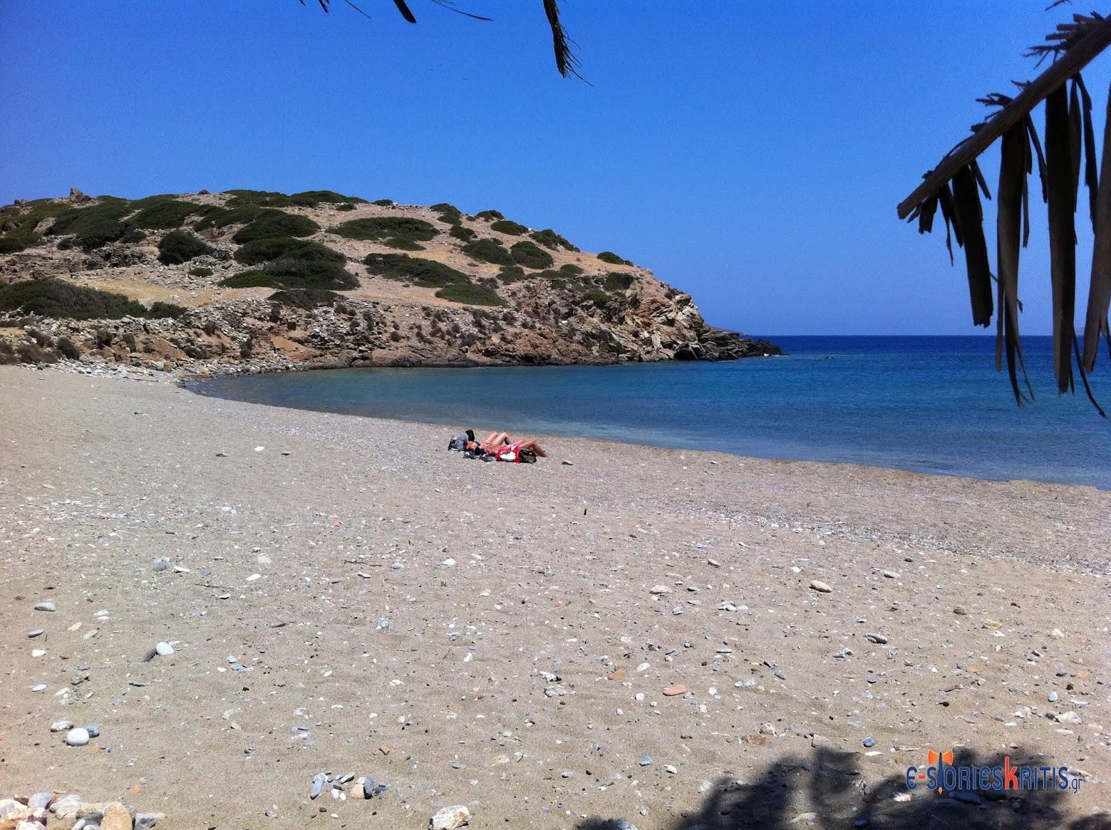 Γνωριμίες με φοίνικες στην παραλία