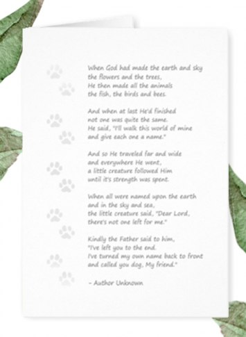 dog sympathy poem dog spelled backwards poem