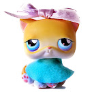 Littlest Pet Shop Small Playset Cat Shorthair (#42) Pet