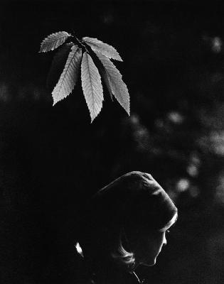 http://sam-haskins.tumblr.com/post/125435673107/november-girl-1967-by-sam-haskins