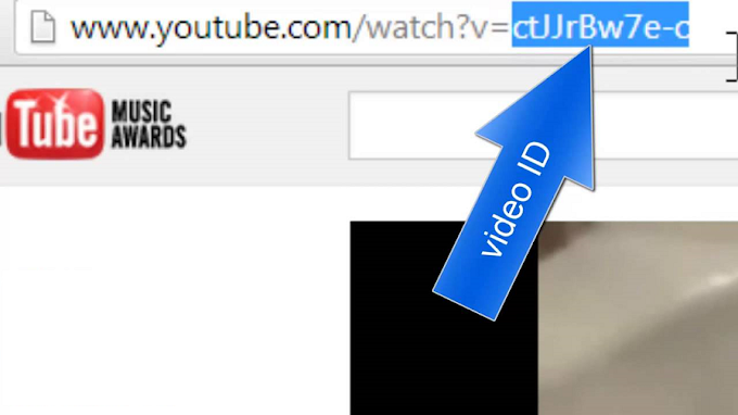 embed small portion of youtube video