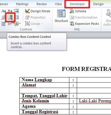 Cara Membuat Form Online dan Cara Membuat Menu Drop-Down dan Check Box Di Ms.Word