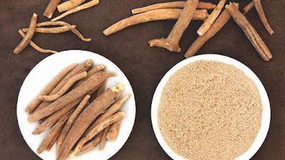 Ashwagandha Side Effects in Hindi