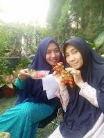 Budidaya Tomat Jordan Oleh KWT Wanita Sejahtera,Muja-Muju Yogyakarta