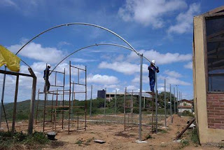 Iniciada instalação da nova estufa agrícola do campus da UFCG de Cuité