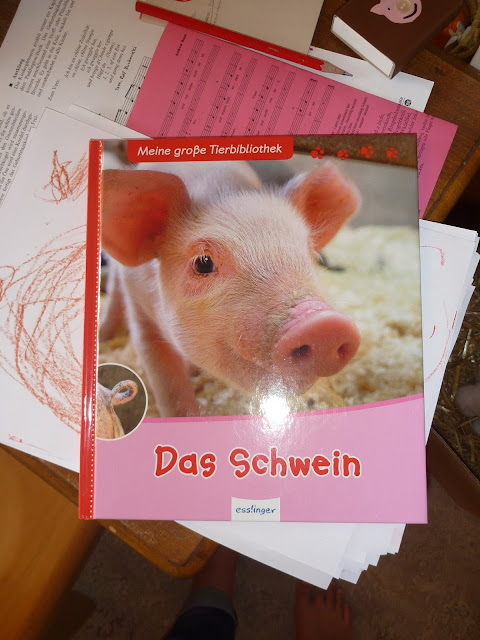 Schweine Kindergarten Buch