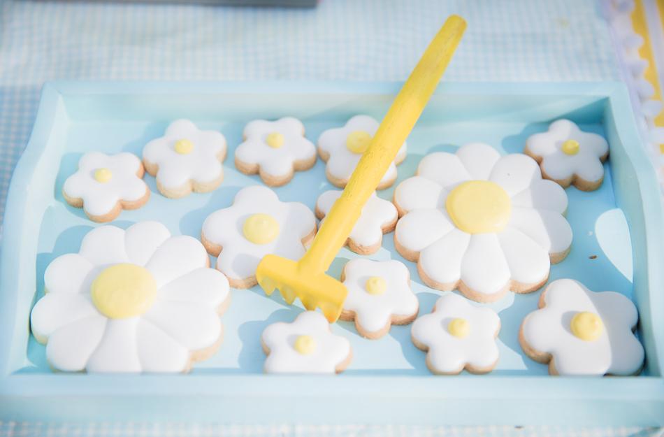 paloma toralles cookies personalizados blog do math flor de sol fotografia alba apen de corazon objetos locacao festas