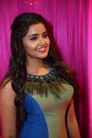 Anupama Parameswaran in lovely shaded gown ~  Exclusive 20.JPG