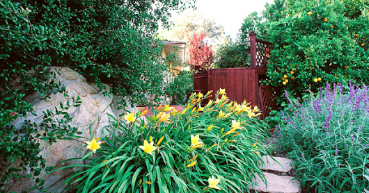 The Importance of Residential Landscape Design