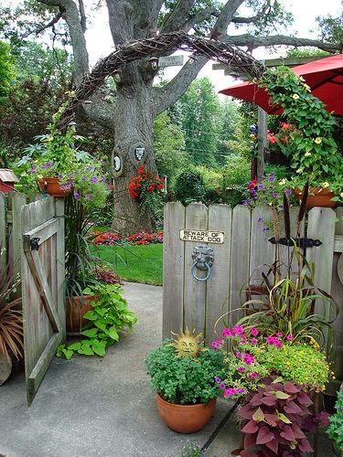 Beautiful Ideas For Amazing Garden With A Different Flowers And Colorful 7